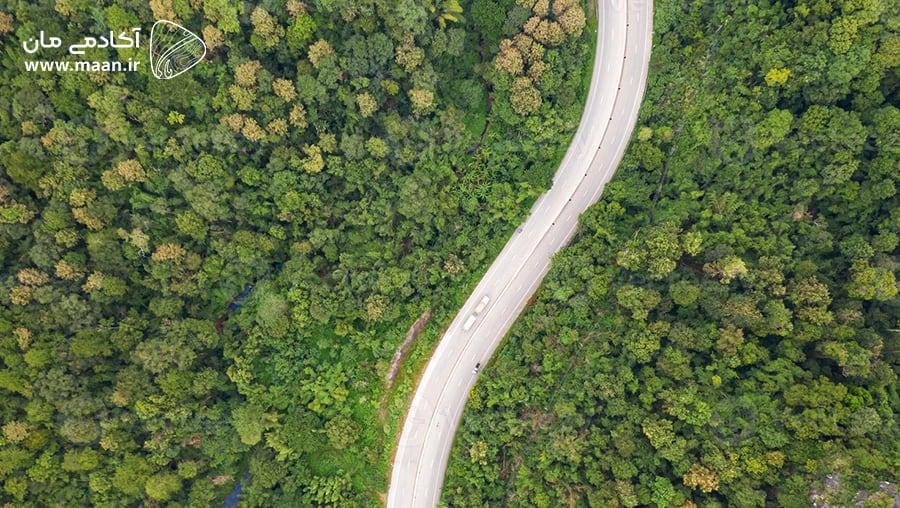 تصویر جنگل بوسیله پهپاد